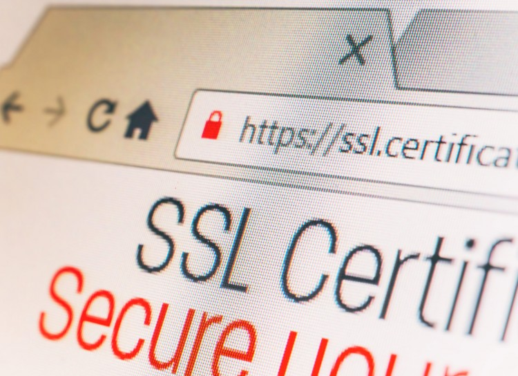 Securing your website